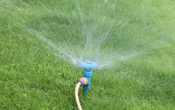 5 Signs of leakage in your sprinkler system