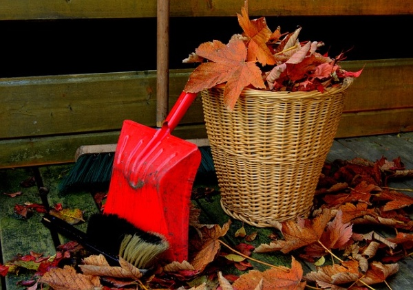 10 Simple Autumn Cleaning Tips for Your Home